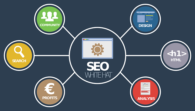 seo analýza on-line 4